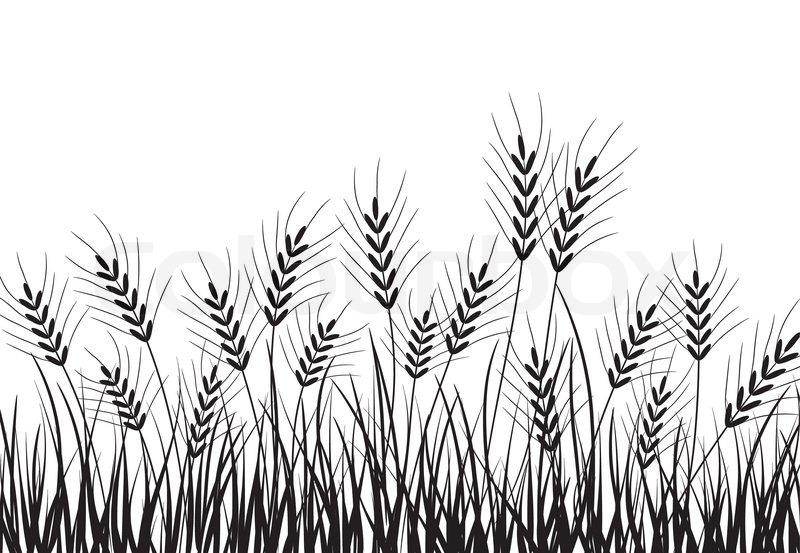 Corn Field Clipart Black And White.