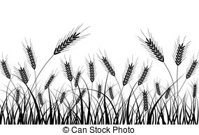 Wheat field Clipart and Stock Illustrations. 8,519 Wheat.
