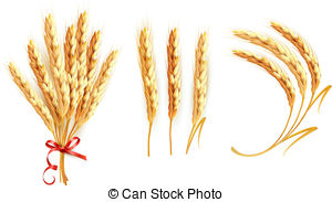 Wheat flour Clipart and Stock Illustrations. 5,436 Wheat flour.