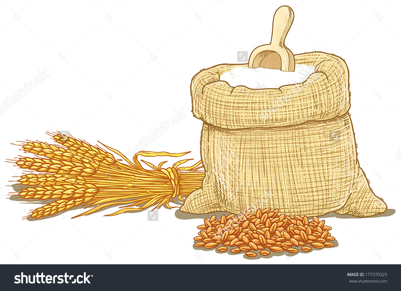 Wheat Flour Sack Stock Vector 177370325.