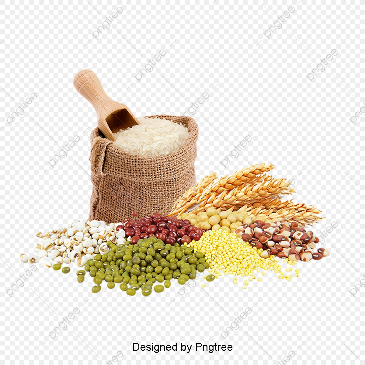 Wheat Flour Stock Image, Wheat Clipart, Dining, Wheat PNG.