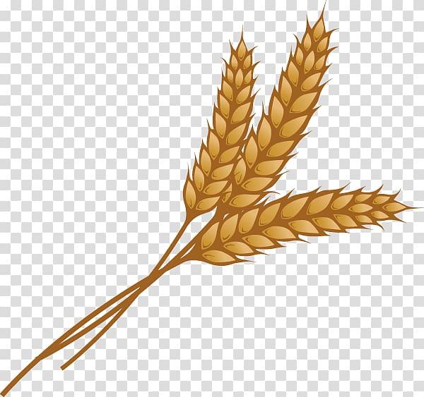 Brown wheat illustration, Wheat Ear Grain , wheat.