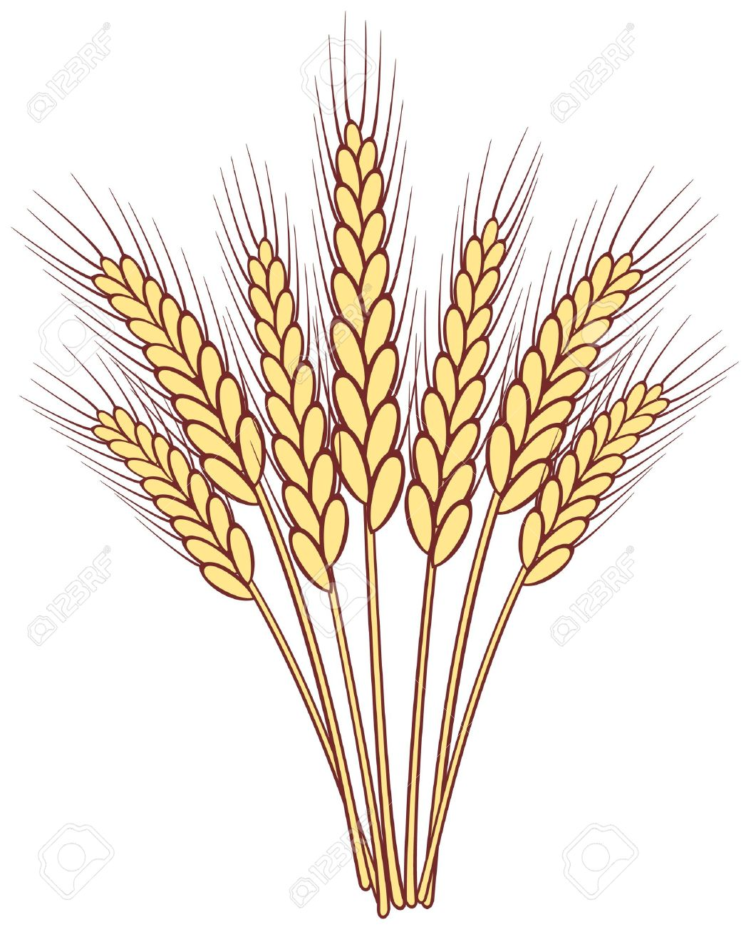 Wheat clipart » Clipart Station.
