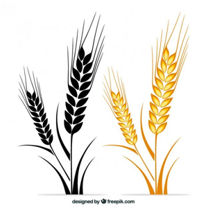 Free Clipart Of Wheat Stalks.