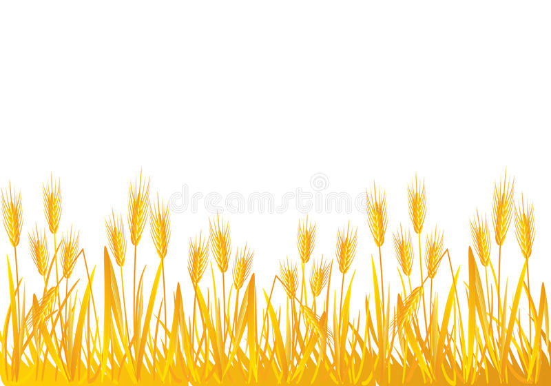 Wheat field clipart 2 » Clipart Station.