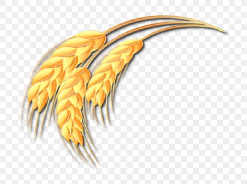 Wheat Ear Drawing Clip Art, PNG, 1044x781px, Wheat, Beak.