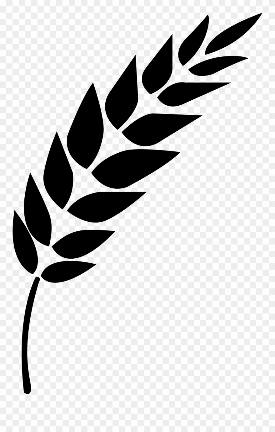 wheat vector clipart 10 free Cliparts | Download images on ...