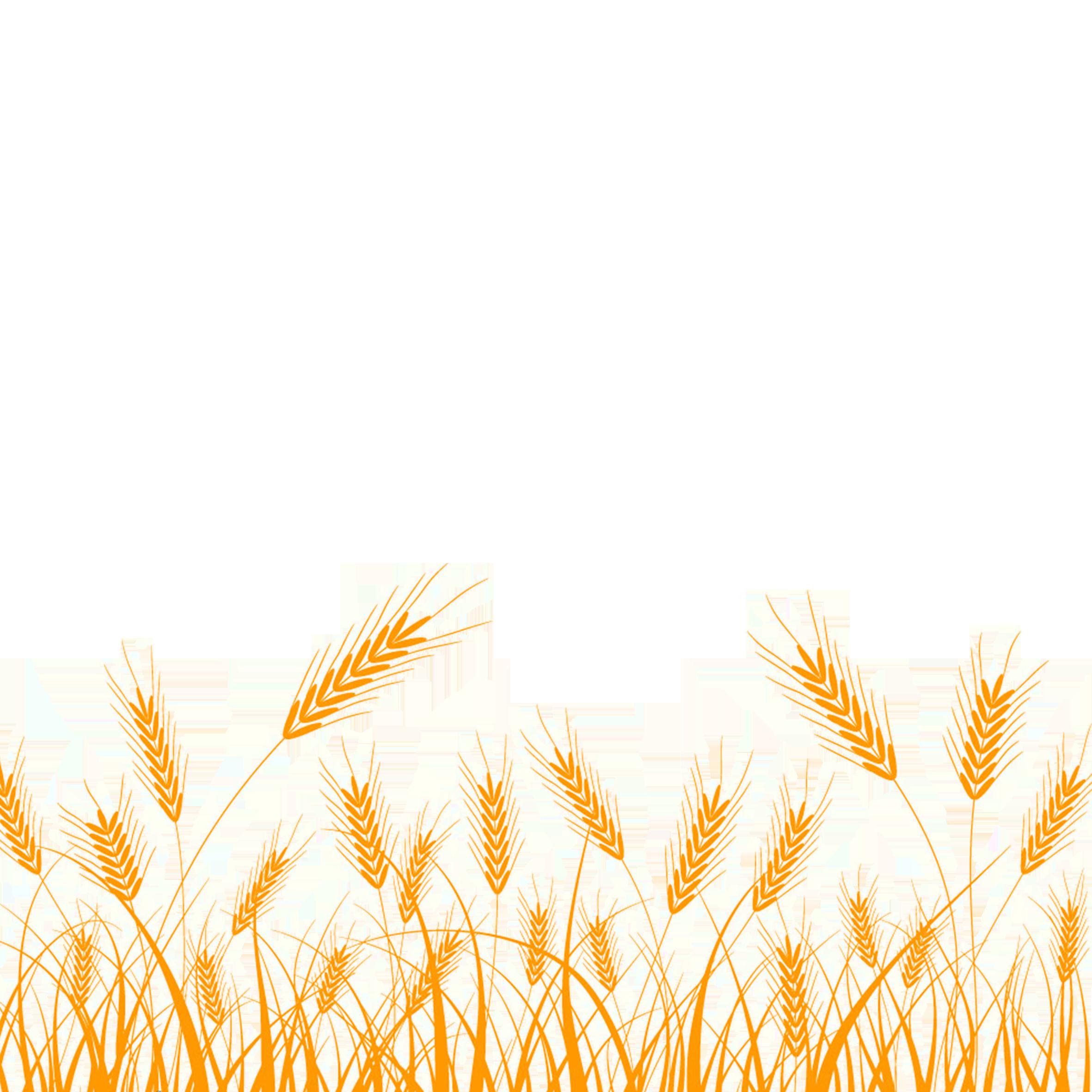 Wheat Silhouette Clip art.