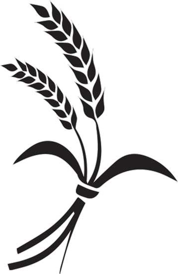 Wheat clipart silhouette, Wheat silhouette Transparent FREE.