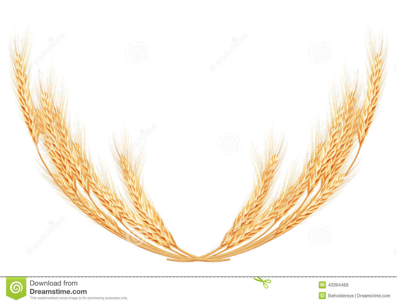 Wheat Spike Clipart