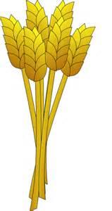 Similiar Cartoon Wheat Keywords.