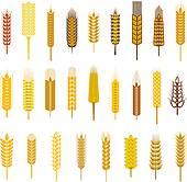 Wheat stalk Clip Art Royalty Free. 581 wheat stalk clipart vector.