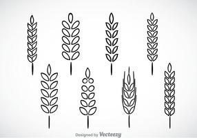 Wheat Stalk Free Vector Art.