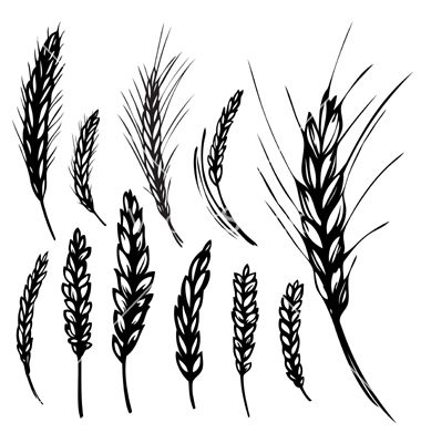 I would like a very small tattoo of a stalk of rye to show.
