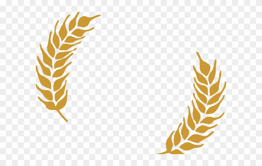 Grains Clipart Wheat Stalk.