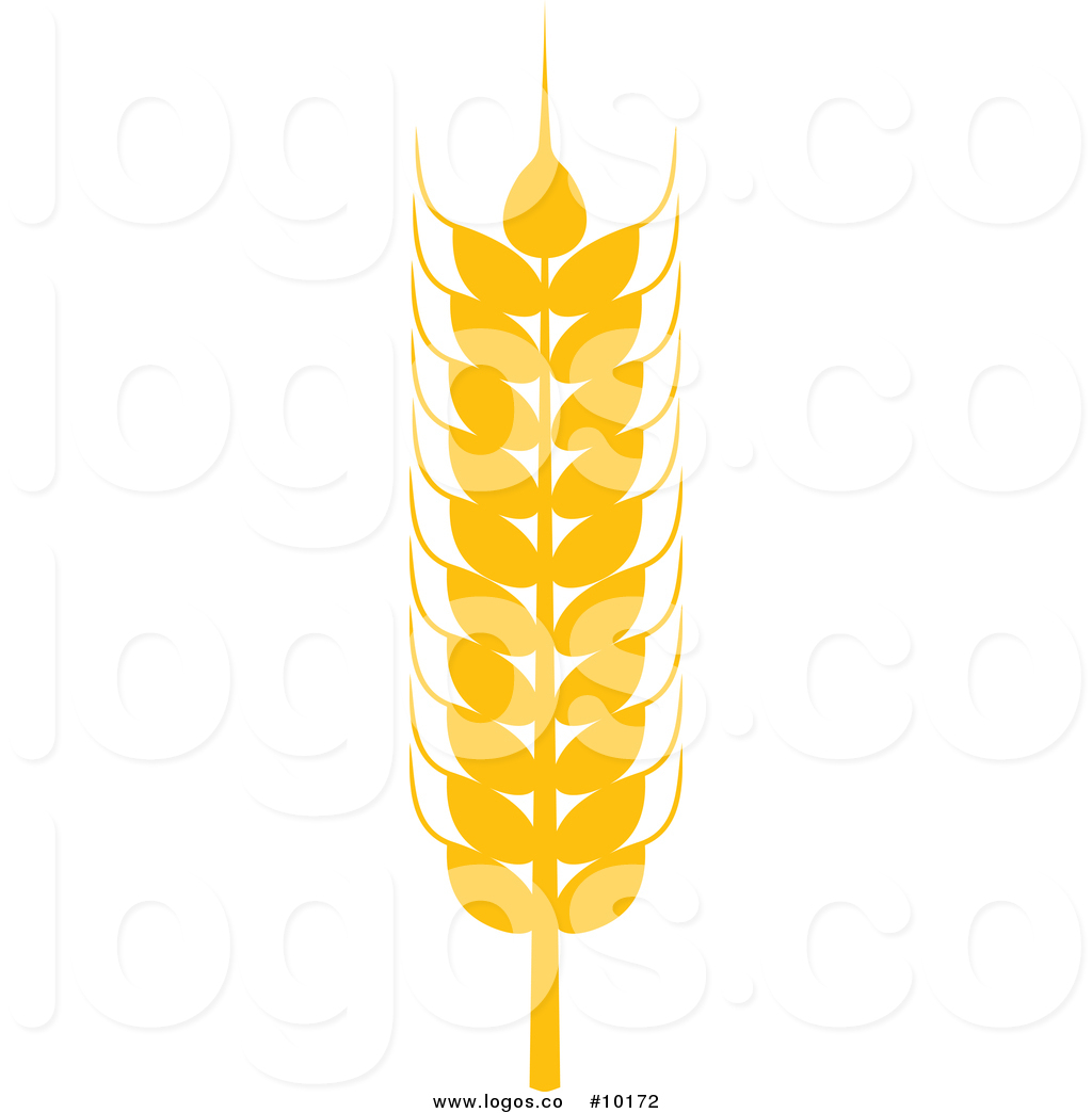 Royalty Free Vector Logo of a Gold Wheat Grain Ear by Vector.