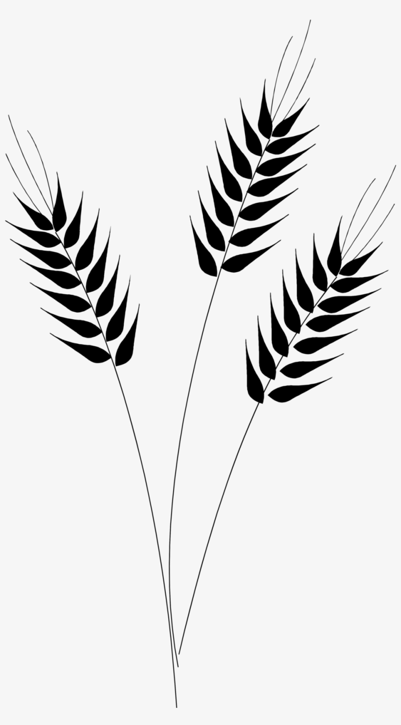 Wheat Vector Clip Art.