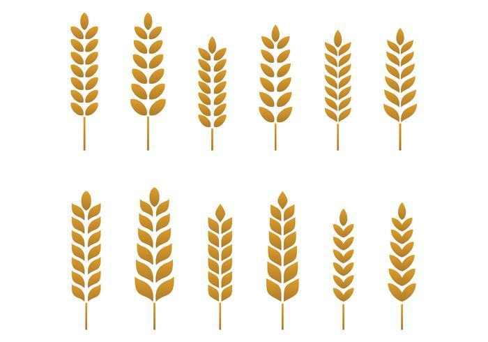 Wheat Free Vector Art.