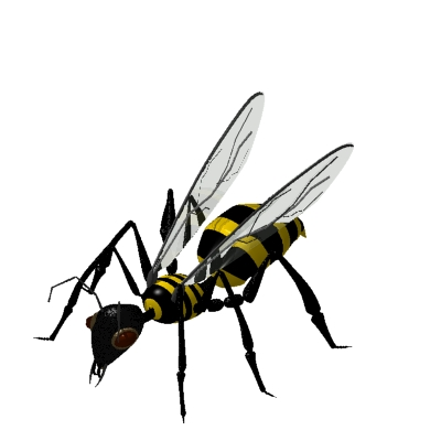 free Bugs Clipart.