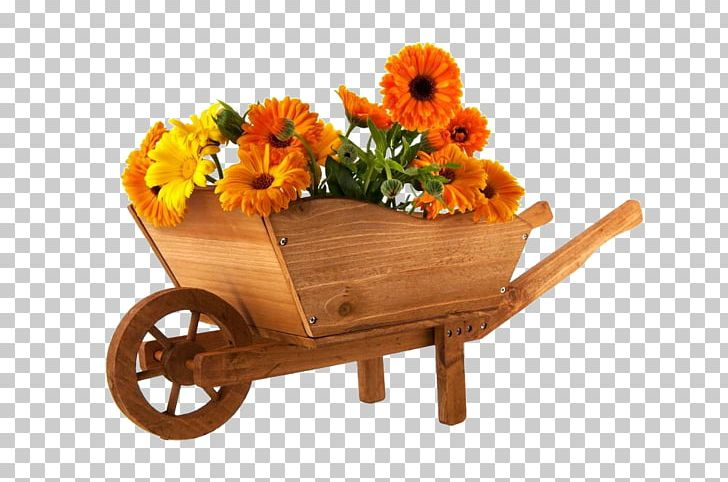 Wheelbarrow Flower Marigold Photography PNG, Clipart.