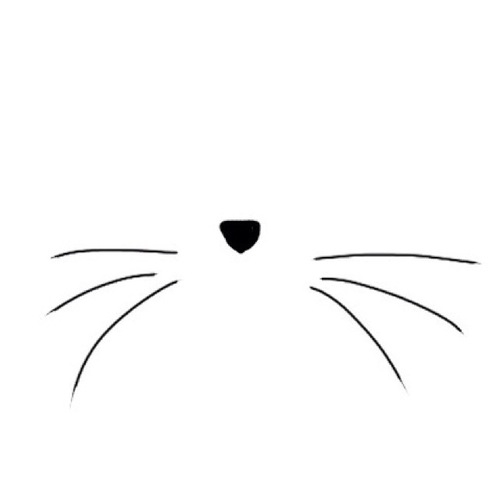 Cat whiskers clipart.