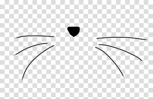 SA Y PEOPLE, black cat\'s whiskers and nose transparent.