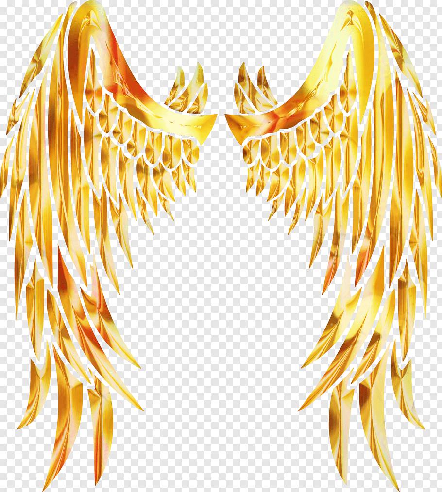 Istx Euesg Clase50 Eo Wing, Beak, Neck, Feather, Yellow free.