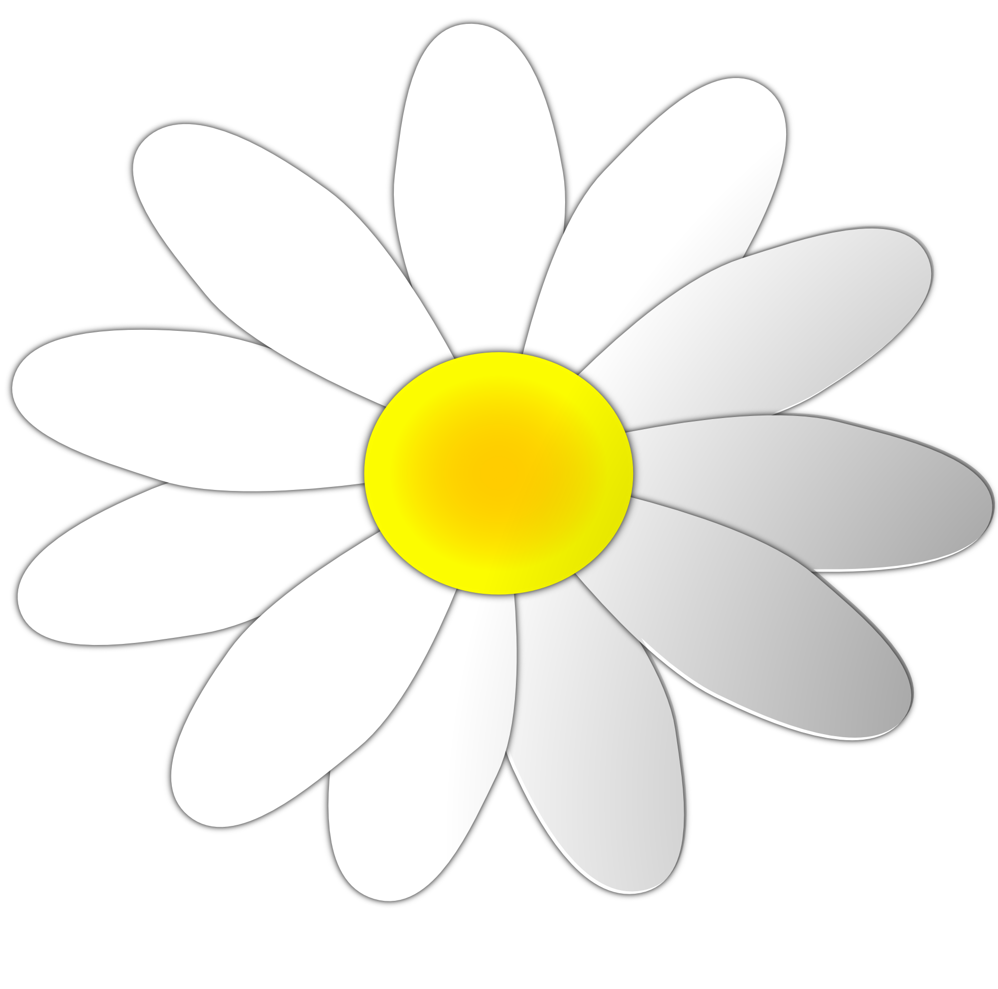 daisy flower clipart. royalty free clip art image white and.
