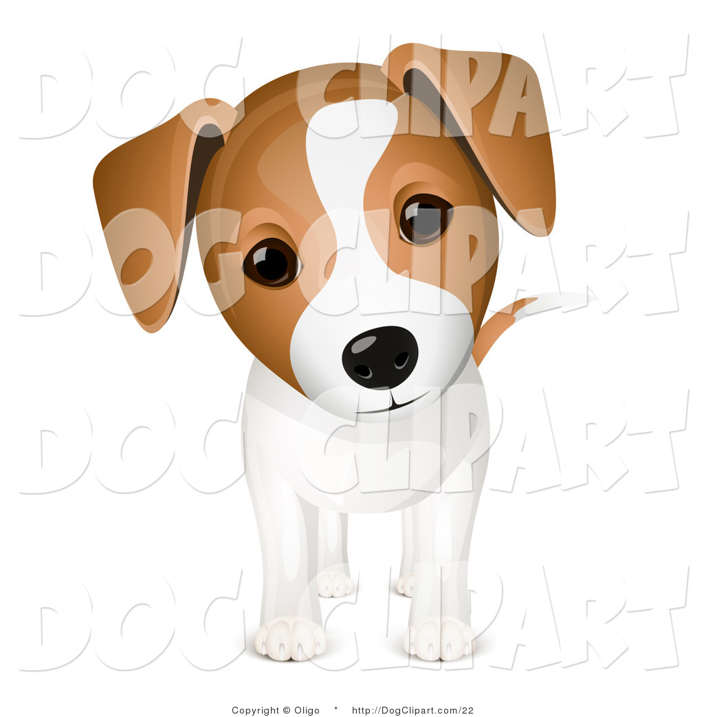 Brown and white dog clipart.