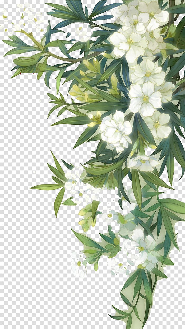 Familiar Wild Flowers Watercolour Flowers, White blooming.