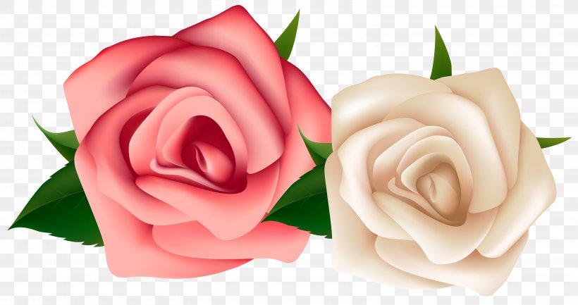 Rose White Clip Art, PNG, 6332x3349px, Rose, Black Rose.