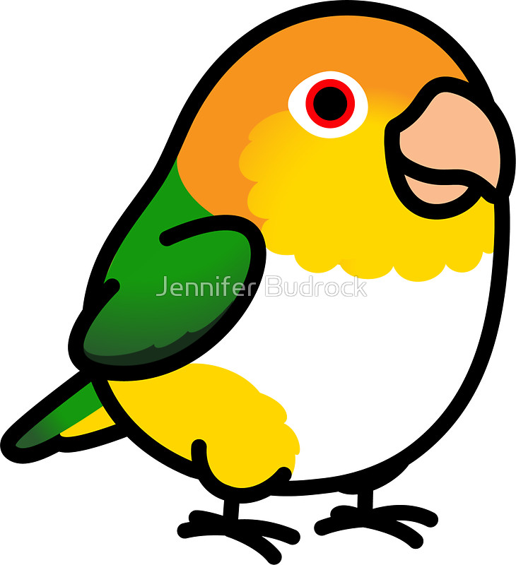 """Chubby White Bellied Caique"""" Stickers by Jennifer Budrock."""