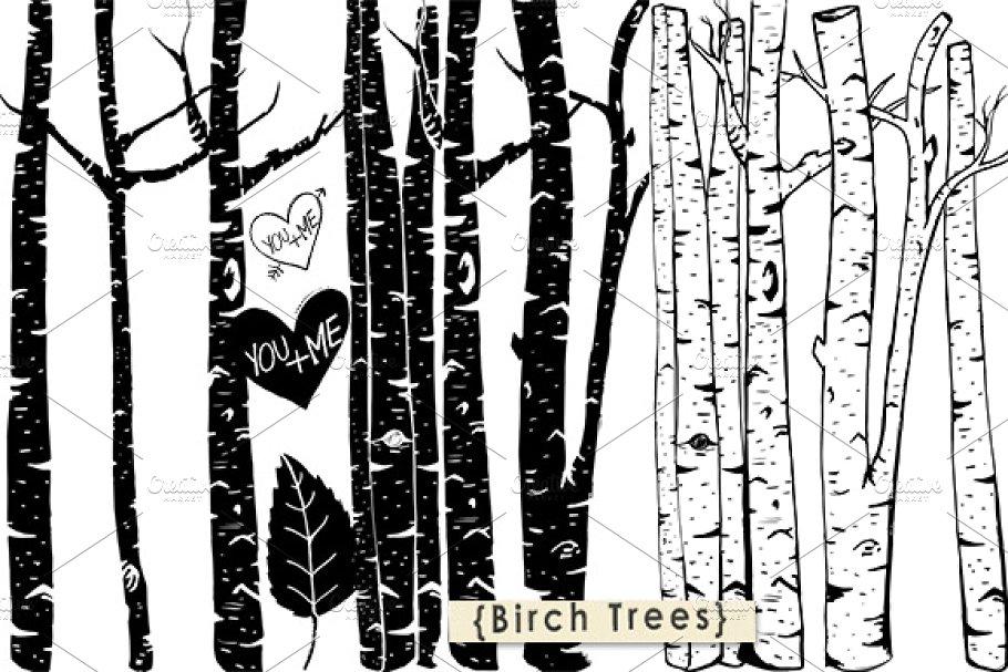 Birch Tree ClipArt + Photoshop Brush.