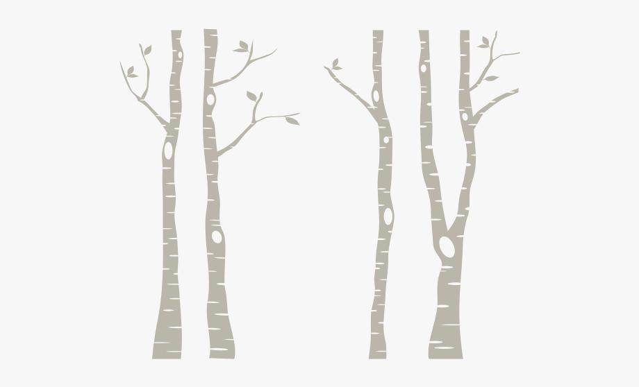 White Birch Tree Png #613752.
