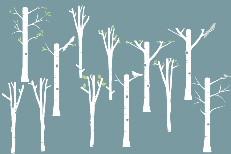Digital White Birch clipart, Tree clipart, Birch png, svg.