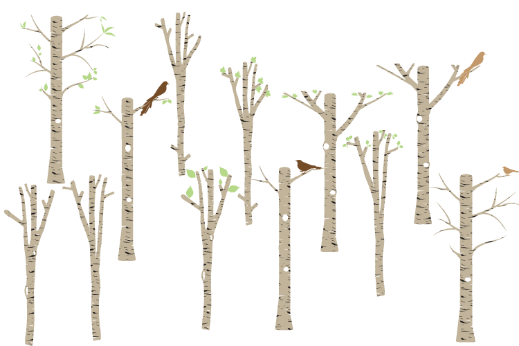 Brown Birch clipart, Tree clipart, Birch vector, Birch PNG.