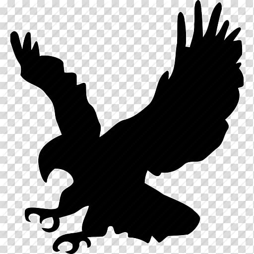 Silhouette of eagle illustration, Bald Eagle Bird Golden.