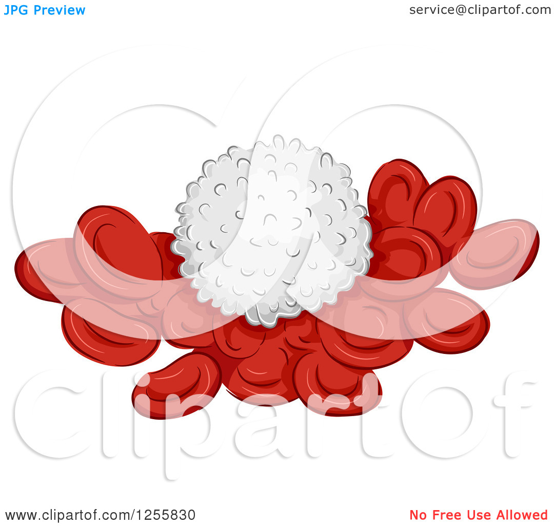 Clipart of a White Blood Cell on Red Cells.