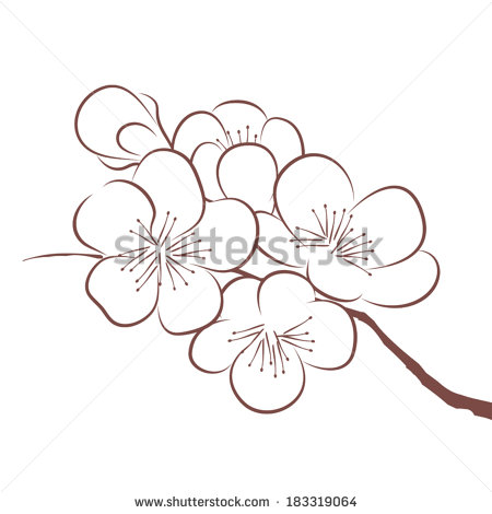 Apple blossom clipart black and white.