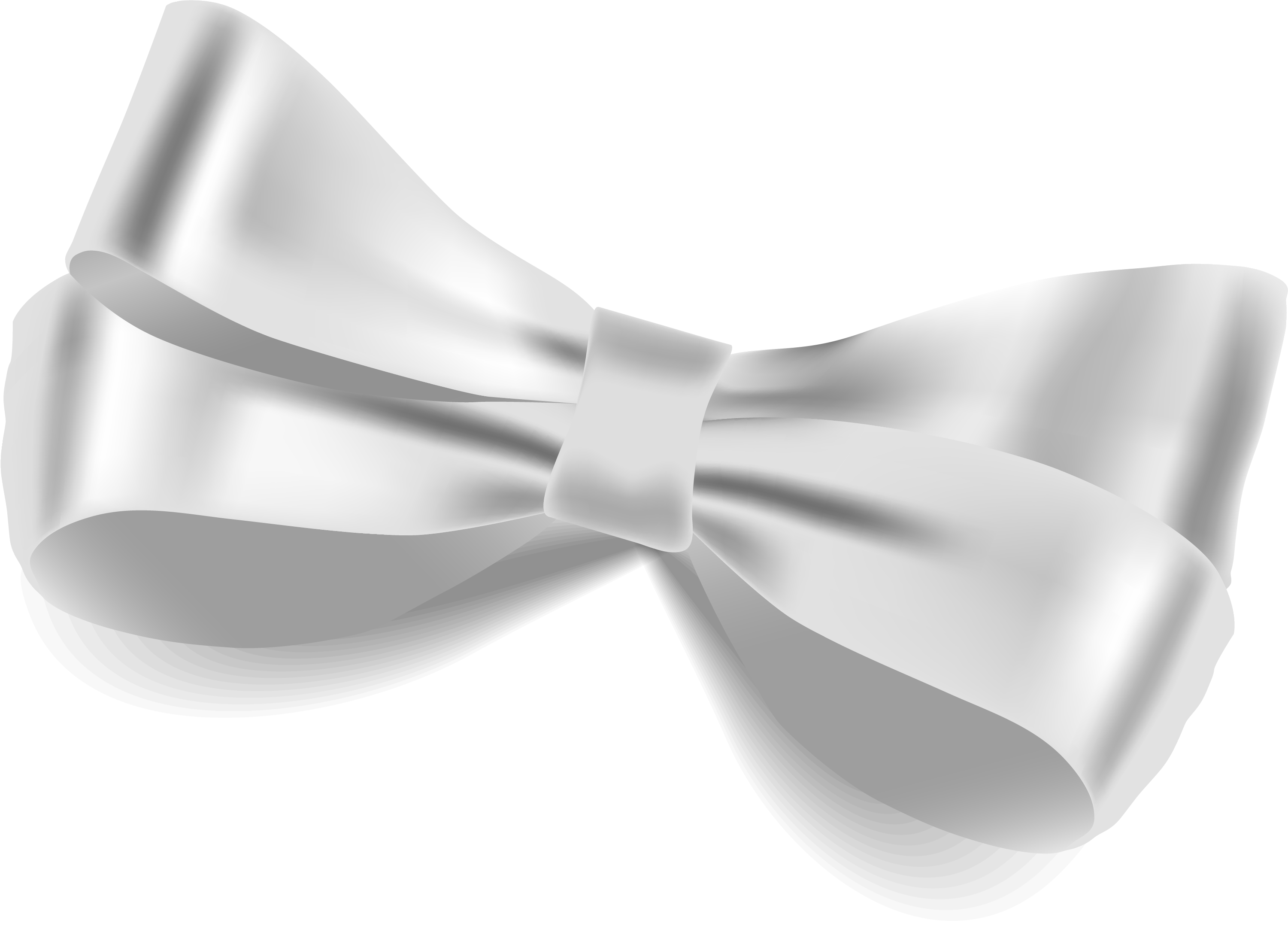 Bow tie Butterfly White Ribbon.