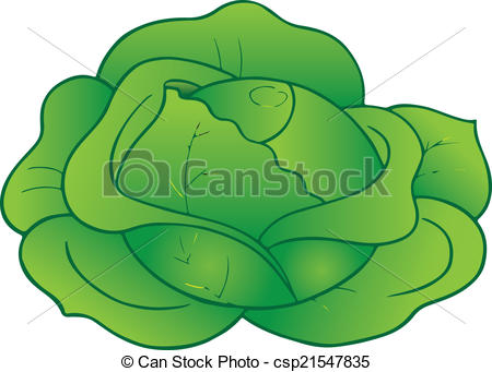 White cabbage Vector Clipart Royalty Free. 1,491 White cabbage.