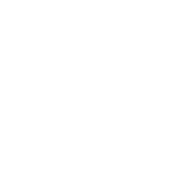 White car icon.