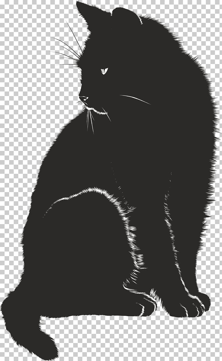 Cat Pet sitting Kitten , black and white PNG clipart.