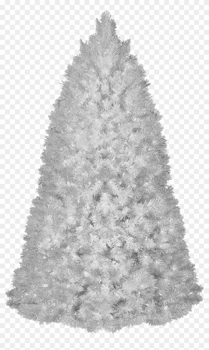 White Christmas Tree Transparent Background, HD Png Download.