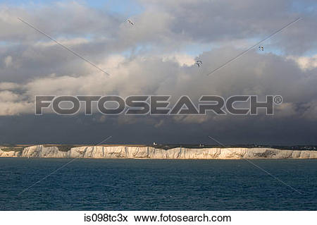 Picture of White cliffs of dover is098tc3x.