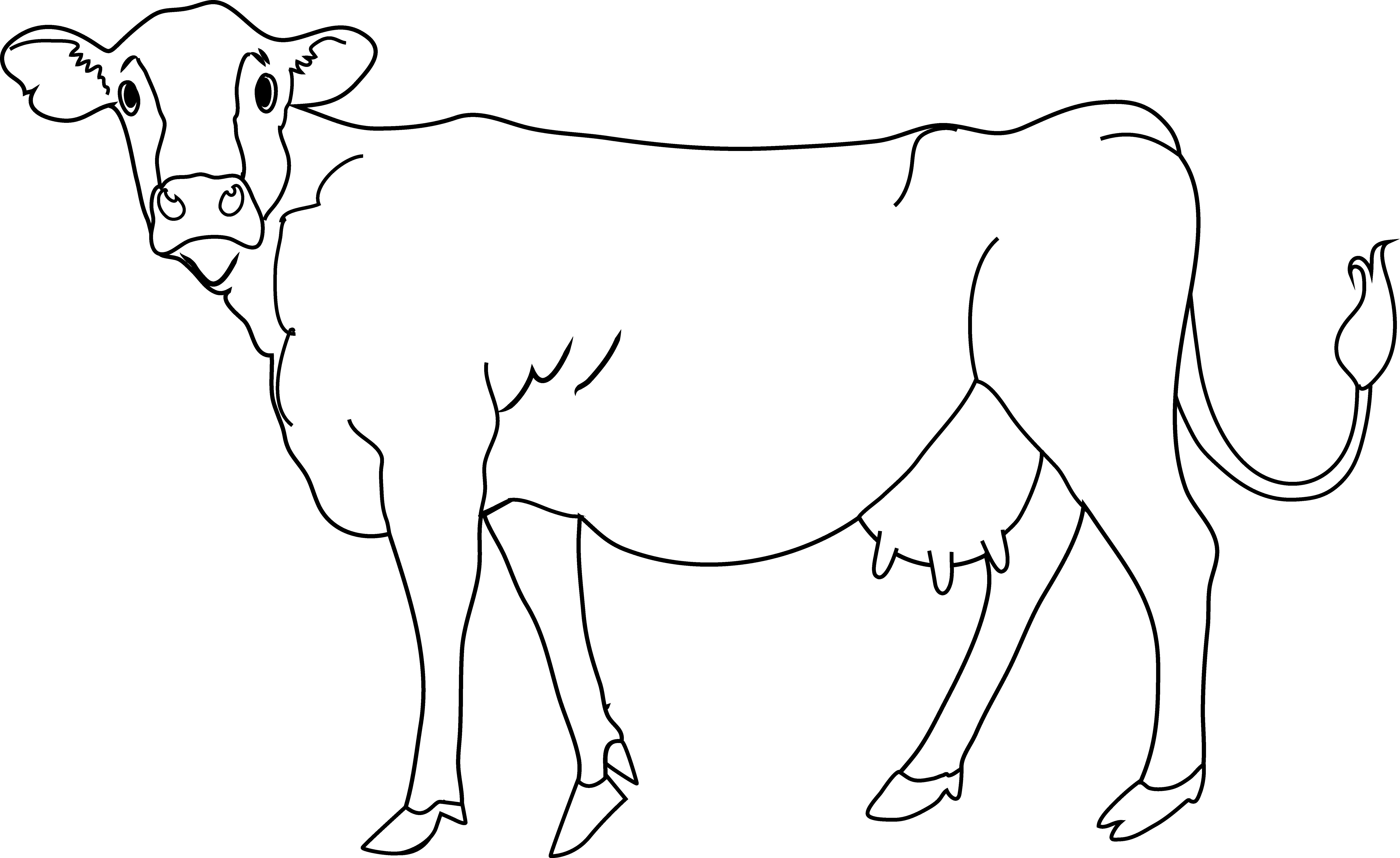 White cow clipart.