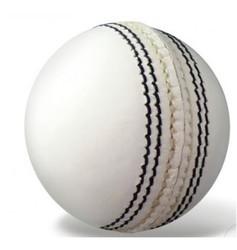Sports Academy White Cricket Ball.