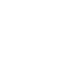 White crown 3 icon.