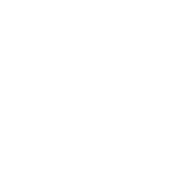 White crown icon.