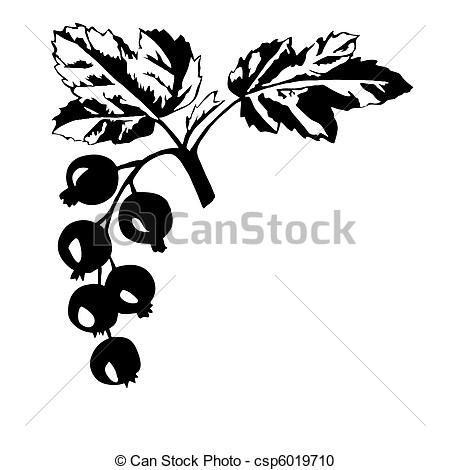Vector Clipart of vector silhouette of the black currant on white.
